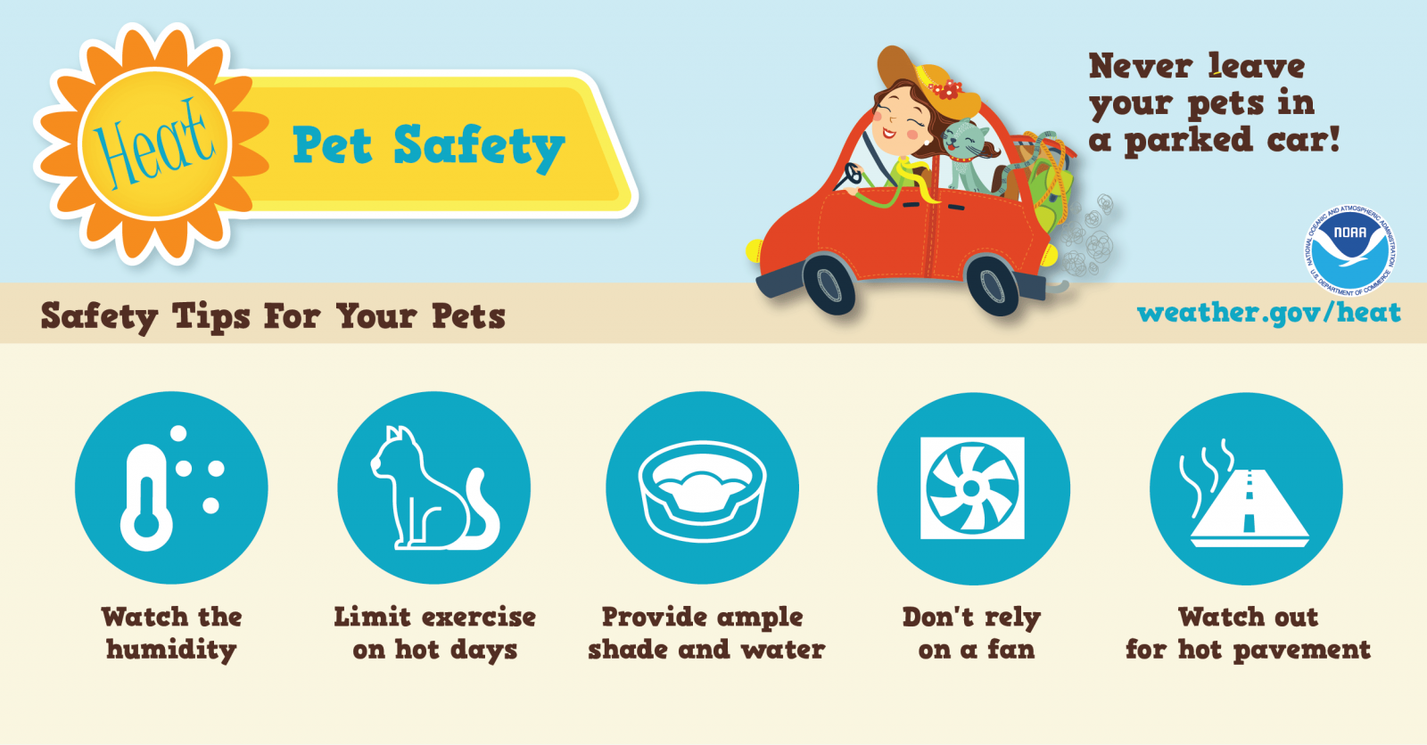 Pet Heat Safety graphic: Never leave pet in car, watch humidity, limit excercise, provide lots of water